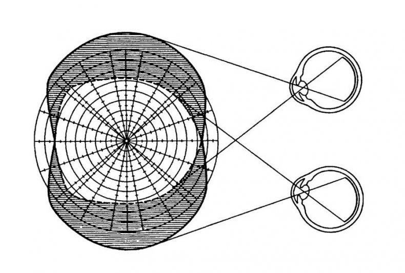 Периметрия глаза